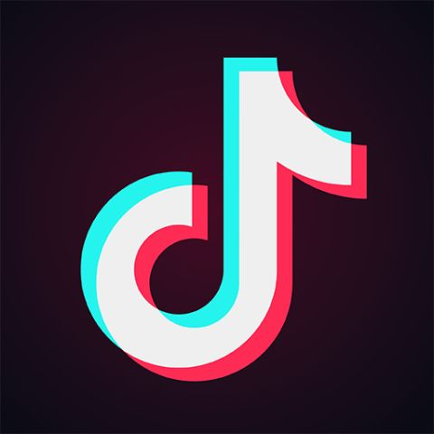 "TikTok ban, ""ByteDance"" set to lose Rs.45,000 crore"
