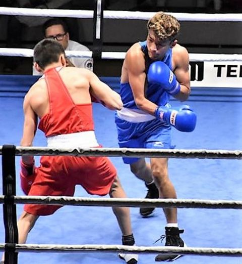 Indian boxers assure five berths in the finals of GeeBee Boxing Tournament