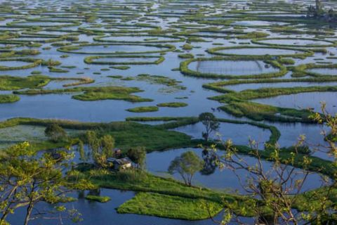 The Present health of Loktak Lake
