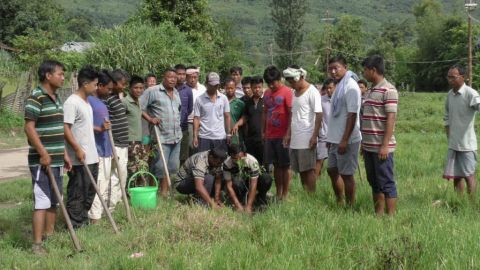 Tree plantation at Machengpat, Andro